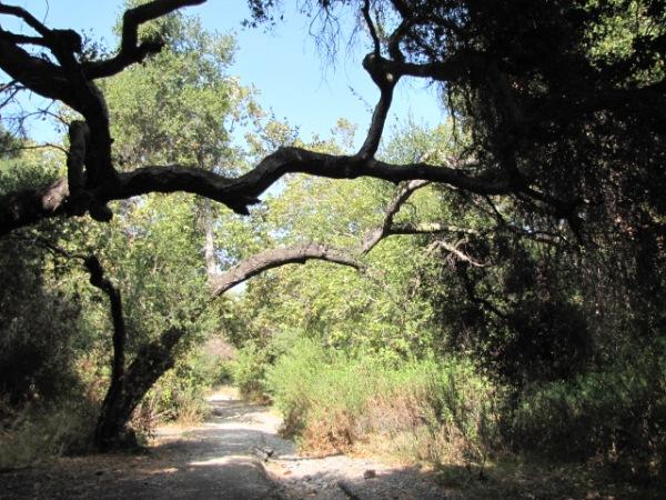 hiking-2011-10-240